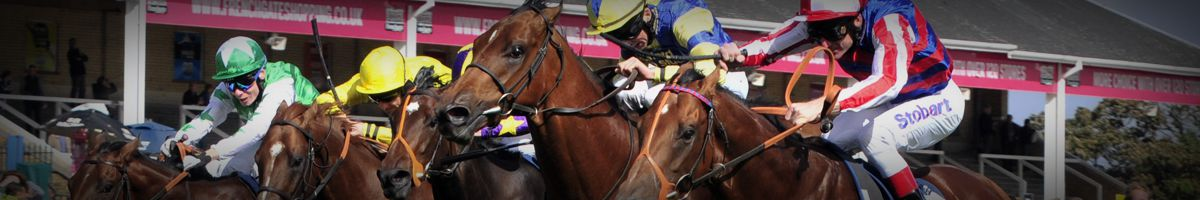 Horse Racing Tours Travel
